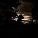 In the dark by Josie Jackson