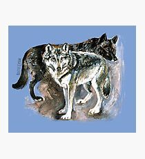 Totem timber wolf over blue Photographic Print