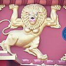 Lion by Sunil Bhardwaj