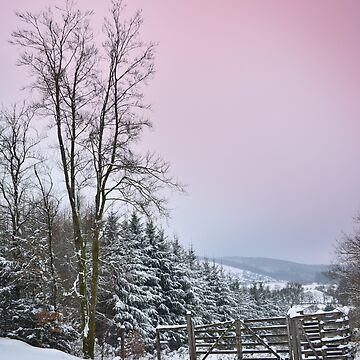 Snowgate by alisonchambers