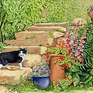 Blackie's Patch (watercolour on paper) by Lynne Henderson