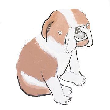 English Bulldog Puppy by MollyNewport