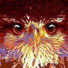 Hawk by tcdipswich
