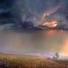In The Fields by Igor Zenin