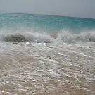 Windy Fuerteventura! by Daniela Cifarelli