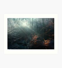 First Rays on a Frosty Morning Art Print