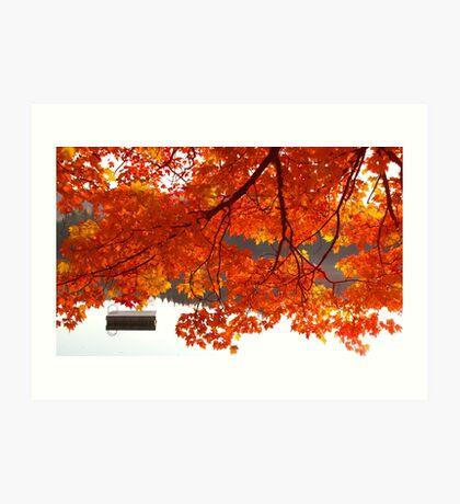 Summer's End - Fall creeps in Art Print