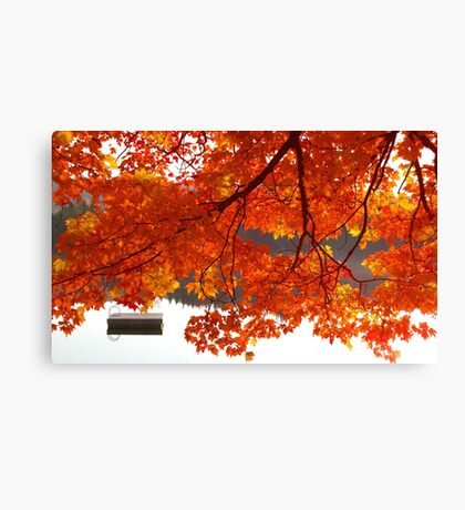 Summer's End - Fall creeps in Canvas Print