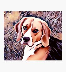 The Beagle Photographic Print