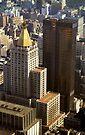 New York Life Building by John Schneider