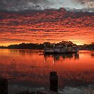Ferry Sunrise by Dave  Hartley