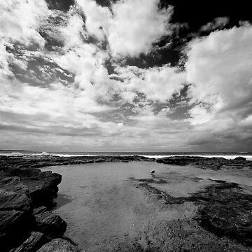 Cronulla Rock Pool by xploit