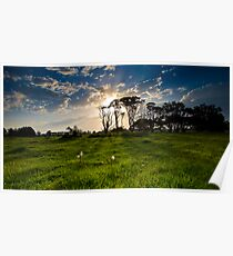 nowra sunset Poster