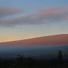 dawn and fog on Mauna Loa by Lawrence Taguma