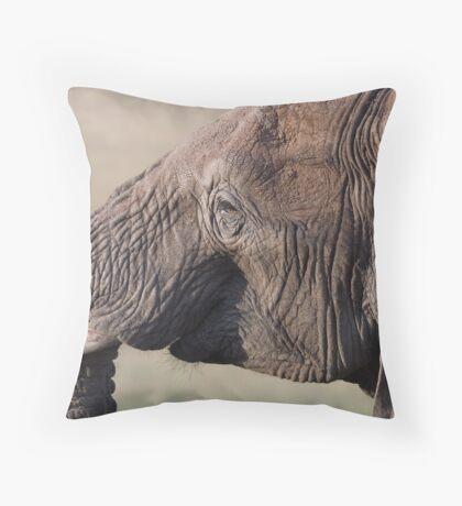 Sunset elephant Throw Pillow