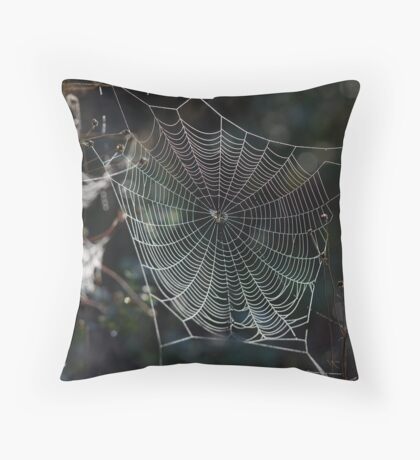Spider's Web 2 Throw Pillow