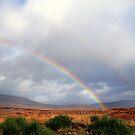 Rannoch  Moor  Rainbow by Alexander Mcrobbie-Munro