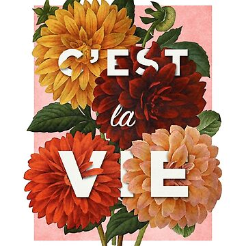 C'est La Vie by thejoyfulfox
