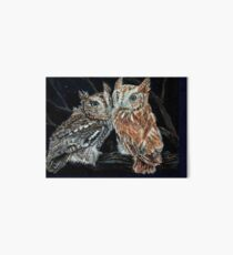 Young love on a starry night - screech owls Art Board