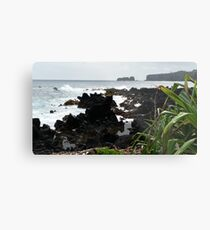 Road to Hana, Maui 2015 Metal Print