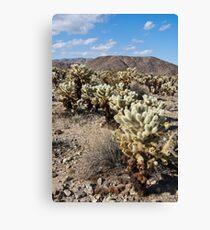 Jumping Cholla Cactus Field Canvas Print
