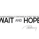 wait and hope - alexandre dumas by razvandrc