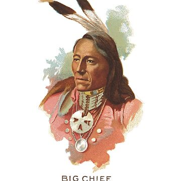 Native American Indian Chief Standing Bear Big Chief Ponca by thespottydogg