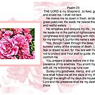 PSALM 23 /TEXT COLLECTION by Shoshonan
