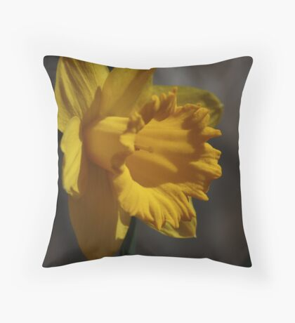Bright as Sunshine Throw Pillow