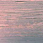 Rustic weathered wood pink and blue ombre shabby by chihuahuashower