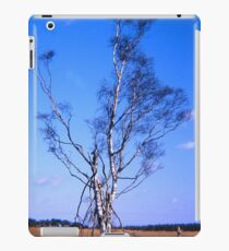 Lonely birch iPad Case/Skin