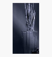 Patterns of Woven Light Photographic Print