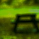 Bench in the park by sonjas