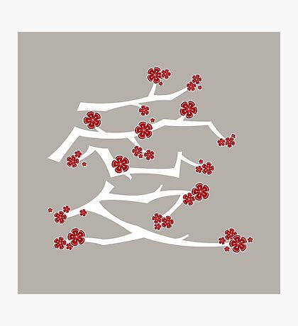 Chinese 'Ai' (Love) Calligraphy With Red Cherry Blossoms On White Branches | Japanese Sakura Kanji Photographic Print