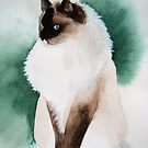 Murphy, A Magnificent Ragdoll Cat by Pat Yager