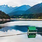 Capilano River Watershed, British Columbia by Jennifer Stuber