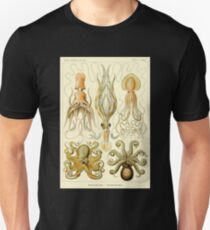 Squid Octopus Marine Biology Science Illustration Cephalopod Unisex T-Shirt