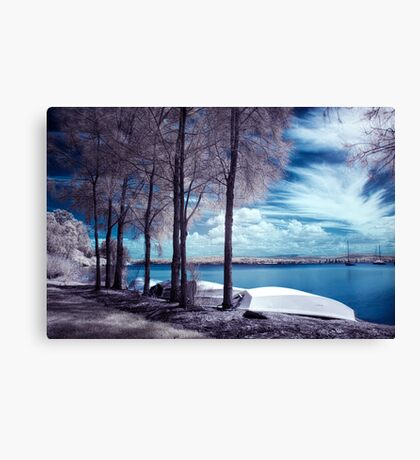 Everlasting Gaze Canvas Print