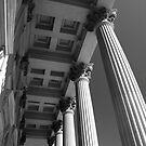 Columns by Wendy Mogul