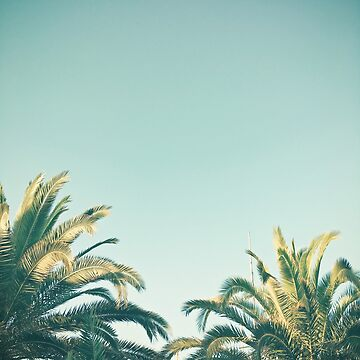 Summer Time by Cassia