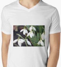 snowdrops spring season nature background  Men's V-Neck T-Shirt