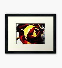 Fire Rose Framed Print