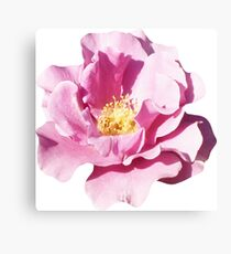 PURPLE_00125_SQ5K Canvas Print