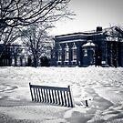 Snowy Hanover by Rachel Blumenthal