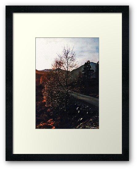 Morning In Glen Torridon by Elizabeth Austin-Craig