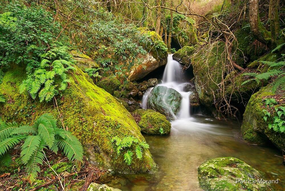 Saparelle waterfall - Corsica by Patrick Morand