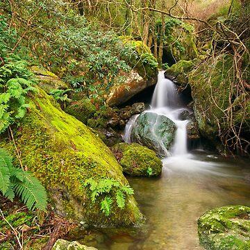 Saparelle waterfall - Corsica by patmo