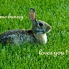 Some Bunny Loves You by Marie Sharp