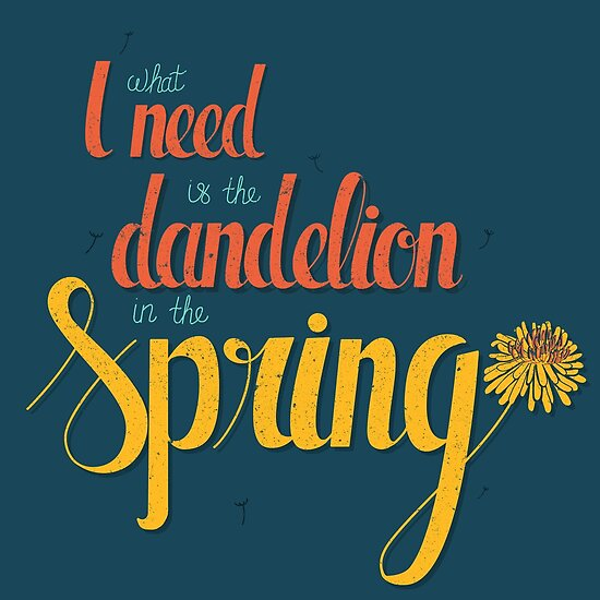Dandelion in the spring by am2c