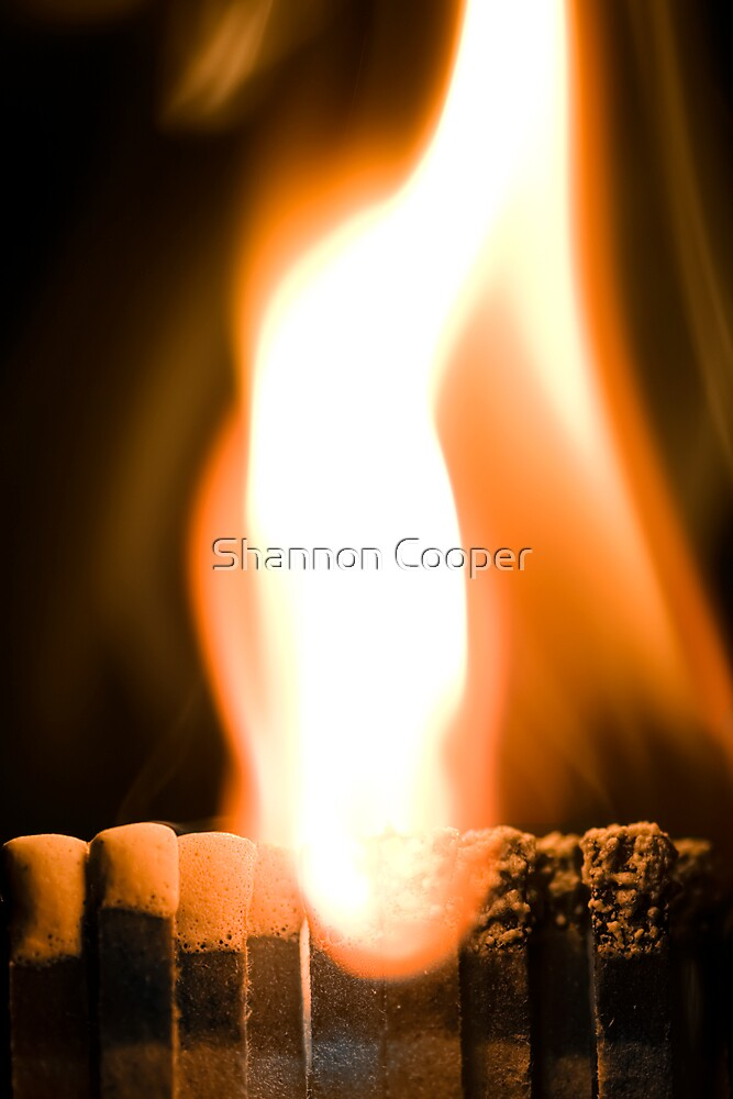 Strike and Burn by Shannon Beauford